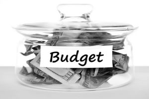 Stay within Budget with SAP Business One