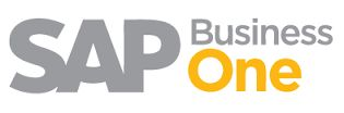 Support Launchpad for SAP Business One